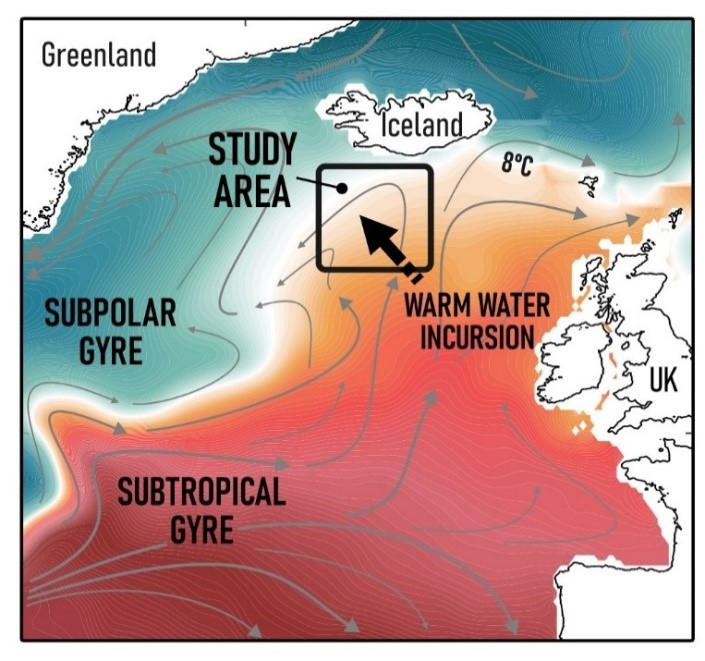 Figure showing the surface circulation of the North Atlantic and the study region where increasing amounts of warm subtropical waters have been detected through the 20th century.  P. Spooner  D. Thornalley