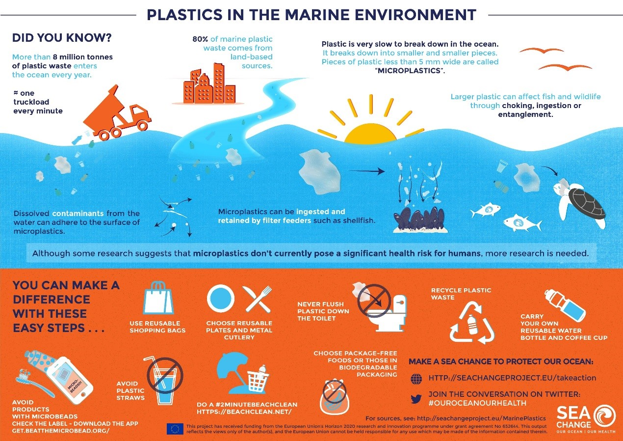 Sea Change infographic english