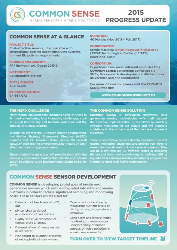 Common Sense factsheet - progress update